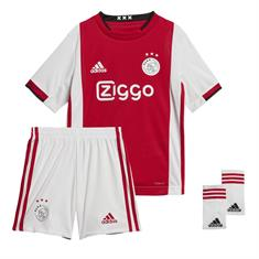 Ajax home mini kit